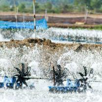Fish Farming - Oxygen