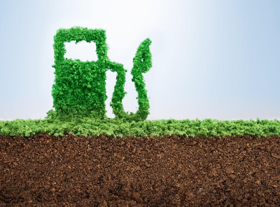 Ethanol Production / Bio-fuels